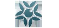 Türkiye'nin İlk Gürcü Web Sitesi Chveneburi.Net