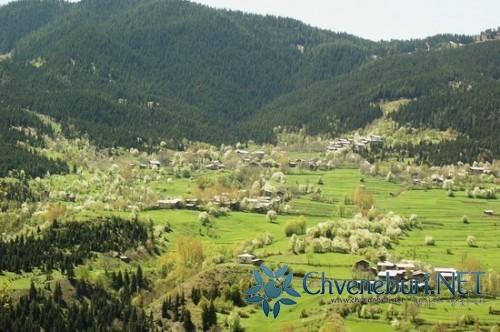 """Şavşat-İmerhevi""""de Yaşayan Gürcülerin Bir Yılı -3-"""