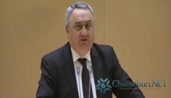 Zviad Kvaçantiradze, Diaspora'dan ve Kafkasya'dan Sorumlu Komisyon Başkanı Oldu