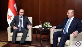 Gürcistan Dışişleri Bakanı, Dışişleri Bakanı Mevlüt Çavuşoğlu Görüştü