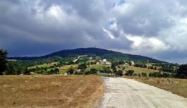 Sarısu - İznik