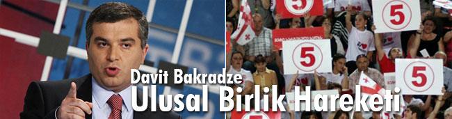Davit Bakradze, Ulusal Birlik Hareket Partisi