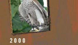 2000 ლაზური სიტყვა – ახალი ლაზური ლექსიკონი
